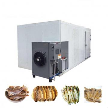 Vacuum Grain Fish Fruit Food Cocoa Beans Vegetable Freeze Dryer Drying Processing Machine Price